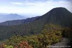 Gunung Gede Pangrango (10)