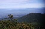Gunung Gede Pangrango (12)
