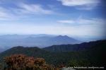 Gunung Gede Pangrango (13)