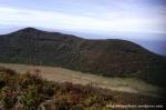 Gunung Gede Pangrango (14)