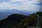 Gunung Gede Pangrango (16)