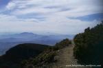 Gunung Gede Pangrango (17)