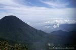 Gunung Gede Pangrango (18)