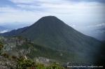 Gunung Gede Pangrango (19)