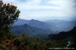Gunung Gede Pangrango (3)