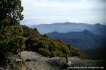 Gunung Gede Pangrango (9)