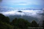 Gunung Merbabu (6)